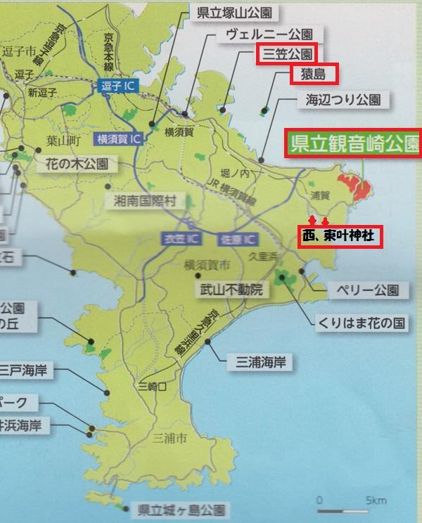 三浦半島地図.jpg