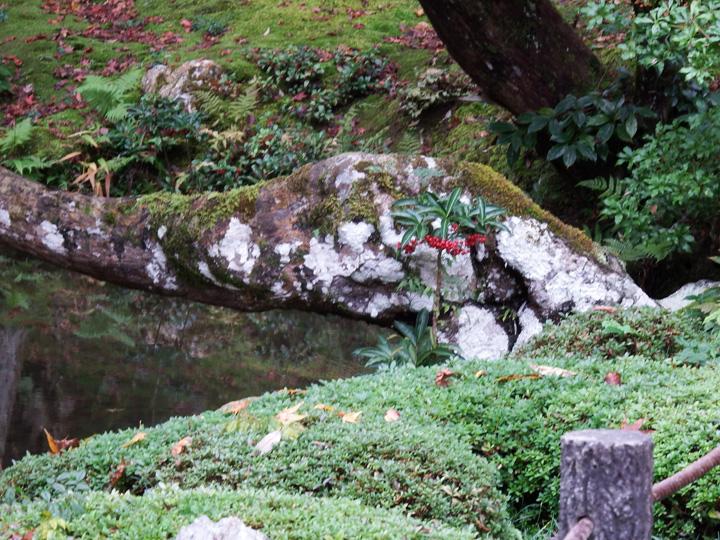 南禅院3.jpg