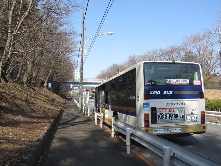 野川公園一の橋.jpg